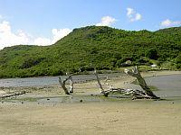 St Barts Salt Pond
